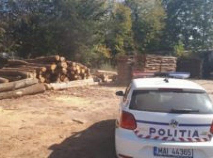 politia-lemn-confiscat-300x168-1